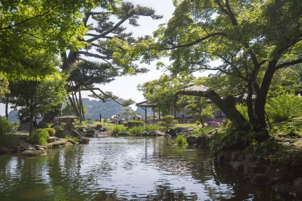traditional Japanese garden spring