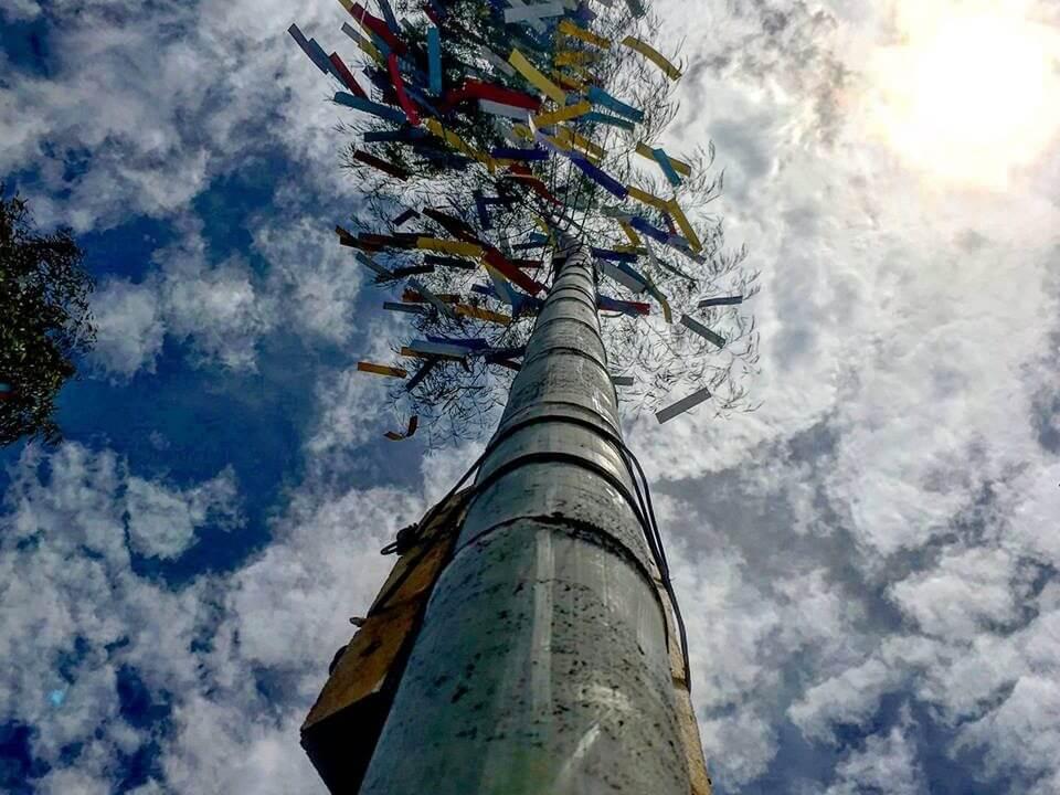 tanabata bamboo at Sengan-en